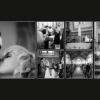 2013-08-album-nina-bjoern_0017